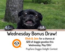 Bonus Prize Draw: Wednesday, May 13th
