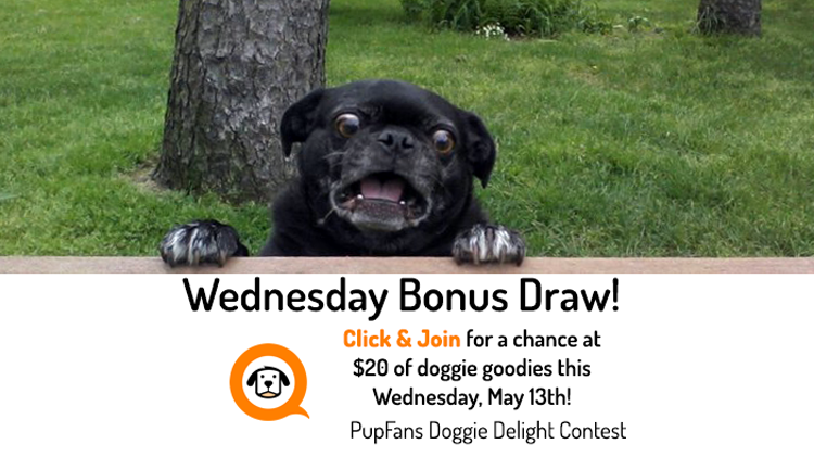 Bonus Draw May 13th