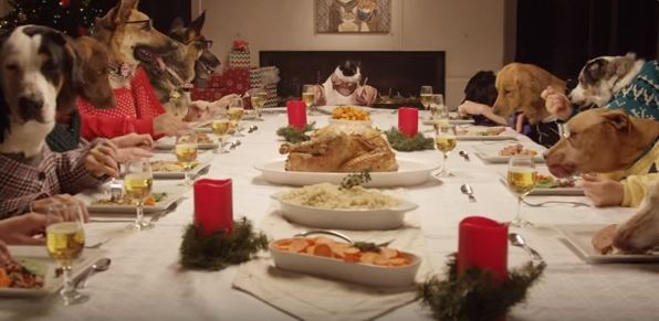 dogs eating a holiday feast