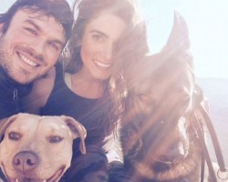 7 Celebs That Got Hotter All Because of Their… Furry Doggy Friends!
