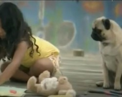 (Video) Commerical Featuring a Pug as a Girl's Guardian Angel is Touching Everyone's Heart