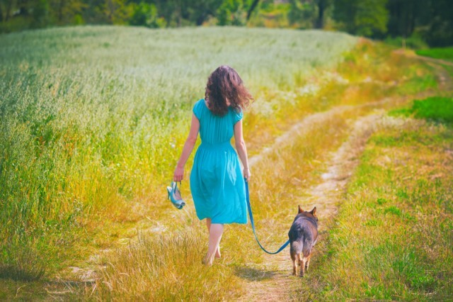 walking a dog in a field
