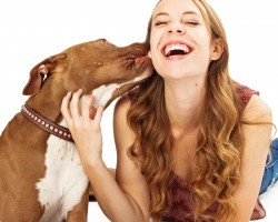 Why a Dog Likes to Lick Her Human