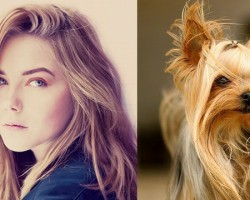 Here's Proof That Dogs Can Look Just Like Their Humans. I Can't Stop Laughing!