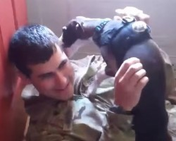 (VIDEO) Dogs Welcome Soldiers Home Compilation Will Cause You to Have a Flood of Happy Tears.