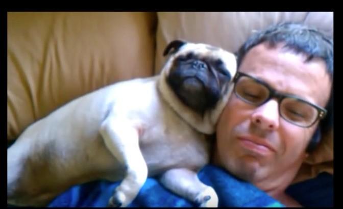 dad annd pug sleeping