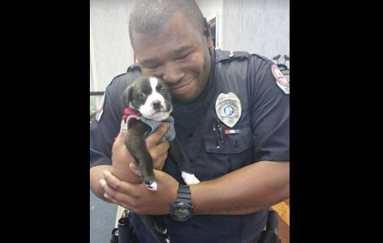 officer and puppy