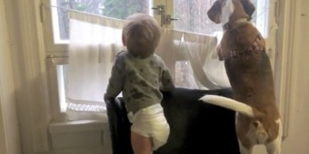 (Video) Beagle and Baby are BFF's. Their Sweet Relationship is Heart Melting!