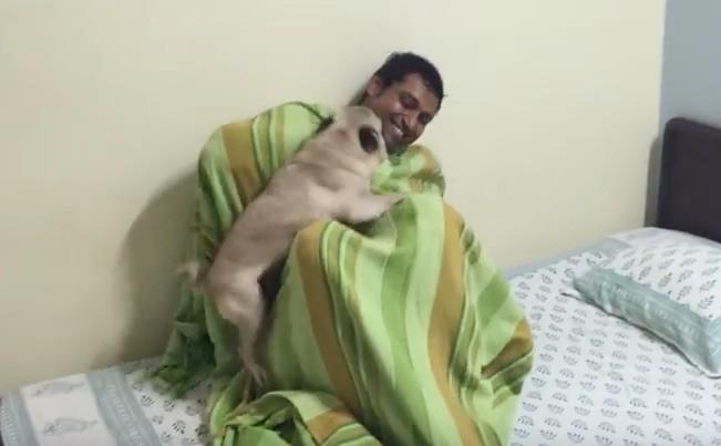 uncle-pug