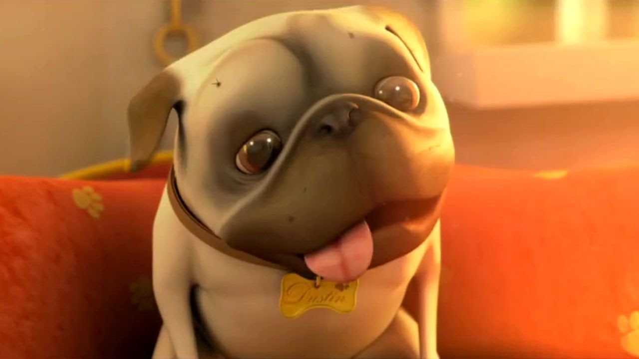 Video See Why This Short Film About A Pug And A Cleaning Robot Has