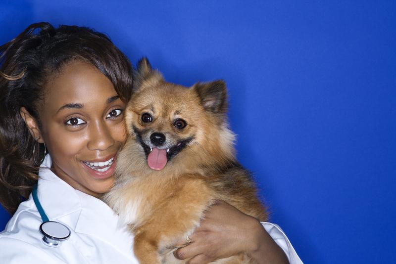 woman-with-pomeranian-dog