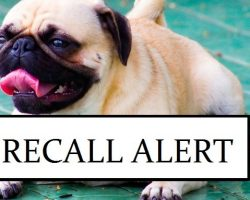 Recall Alert: This Dog Food Was Found to Have a Euthanasia Drug