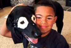 Famous Pup With Vitiligo Helped a Little Boy With the Same Condition Love Himself