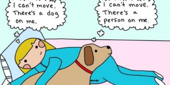 7 Dog Comics Dog Owners Can Totally Relate To