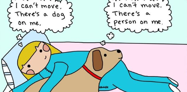 can't move dog comic
